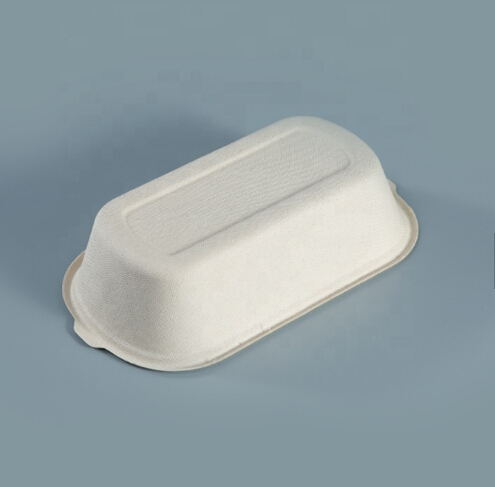 Takeaway Bagasse Sugarcane Pulp Food Container 1000ml