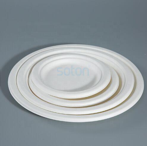 Disposable Sugarcane Pulp Plate